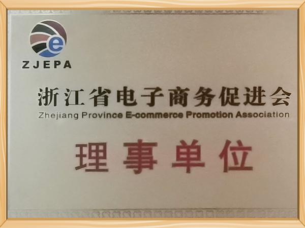 浙江省电子商务促进会理事单位